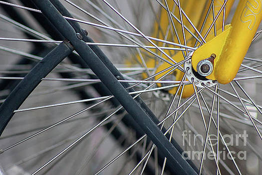 Cycles Abstract Two by Karen Adams