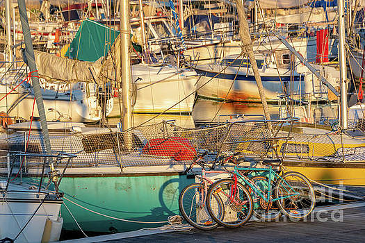 Cycling and sailing by Delphimages Photo Creations