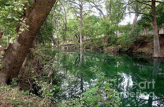 Felipe Adan Lerma - Cypress Creek Mid Afternoon Mid October 2 of 3