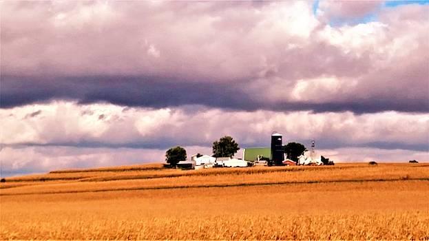 Dairy Farm in Iowa by Peggy Leyva Conley