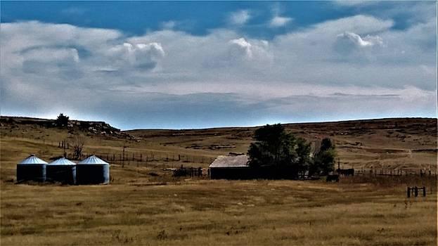 Dairy Farm in Nebraska by Peggy Leyva Conley
