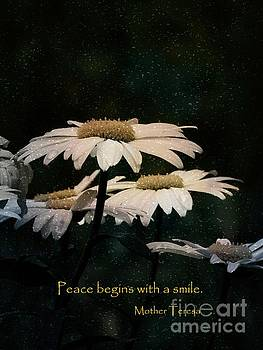Daisy Flower Box Garden - Mother Teresa Quote by Ella Kaye Dickey