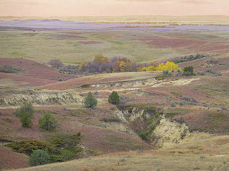 Dakota Grassland Fantasy by Cris Fulton
