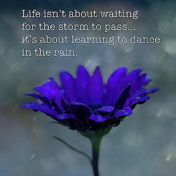 Dance In The Rain by Susan Schmidt