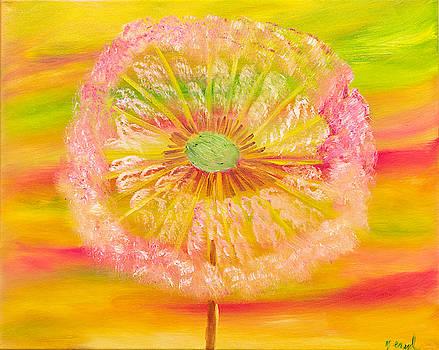 Dandelion Kaleidoscope by Meryl Goudey