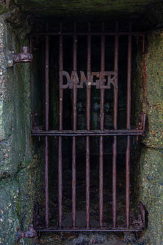 Danger 1 by Steev Stamford