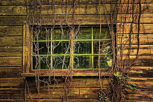 Dark Window by Zal Latzkovich