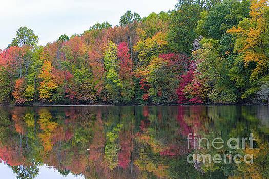 Davidson's Mill Pond in Autumn  by Michael Ver Sprill