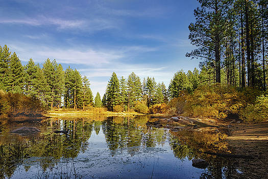 Davis Creek Pond in Fall by Janis Knight