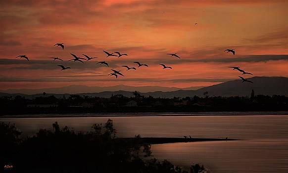 Dawn Land an Sea by John R Williams