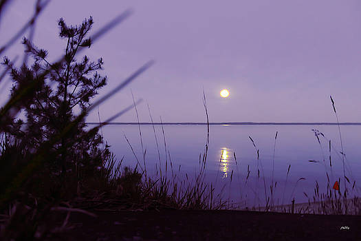 Dawn Over the Straits of Mackinac by Sally Sperry