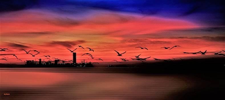 Dawn VII by John R Williams