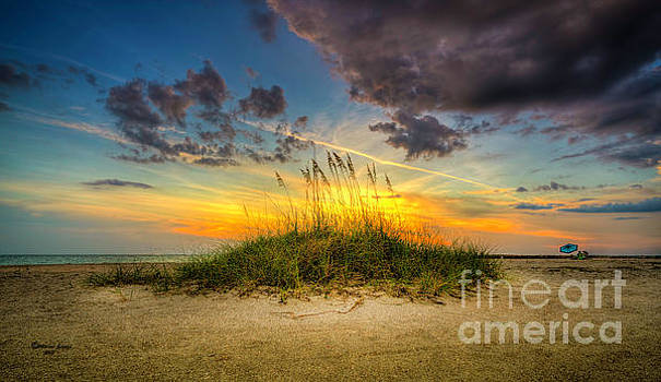 Day At The Beach by Marvin Spates