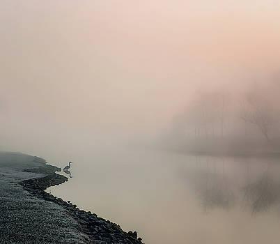 Morning Mist by Darlene Kwiatkowski