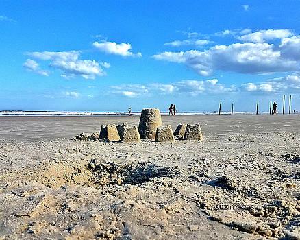Daytona Beach Castle by Susie Loechler