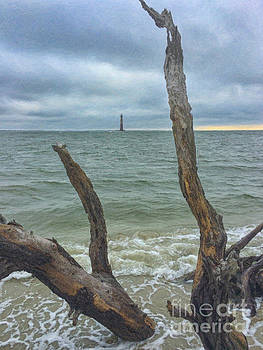 Dead Wood Lighthouse View - Morris Island Lighthouse by Dale Powell