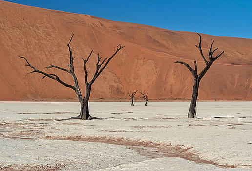 Deadvlei Namibia  by Rand