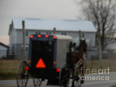 Christine Clark - December Amish Buggy View