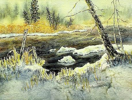 December Day by Carolyn Rosenberger