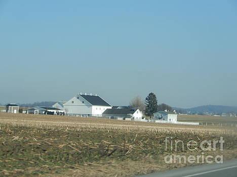 Christine Clark - December Days on an Amish Farm