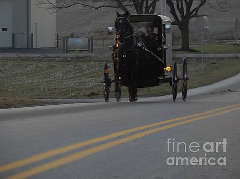 Christine Clark - December Evening Amish Buggy Ride