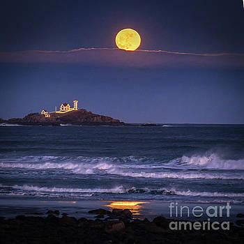 December Moon by Scott Thorp