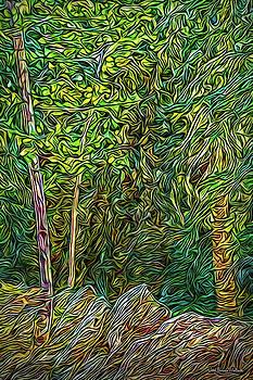 Deep Forest Portal by Joel Bruce Wallach