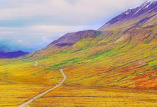 Denali Autumn by David Frankel