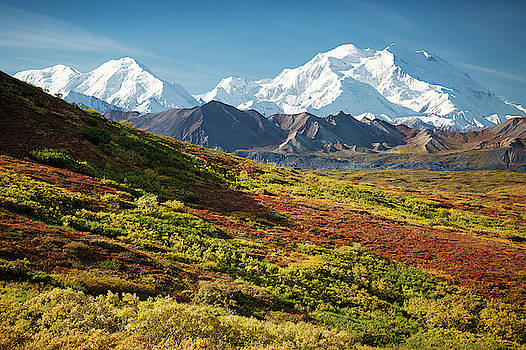 Denali Autumn by Tim Newton