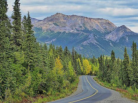 Denali Delight in Alaska by David Frankel