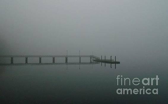 Denman Island Fog by John Lyes