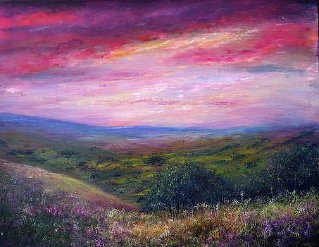 Derbyshire Skies by Ann Marie Bone