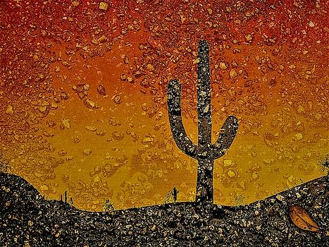 Desert Dreams by Randy Sylvia
