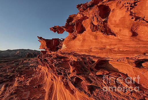Desert Gargoyles by Mike Dawson