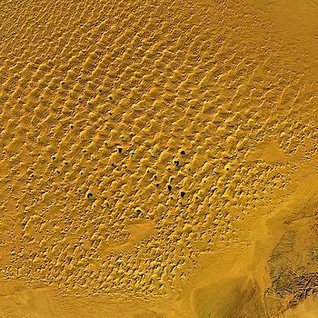 Desert Lakes in Inner Mongolia by Planet Impression