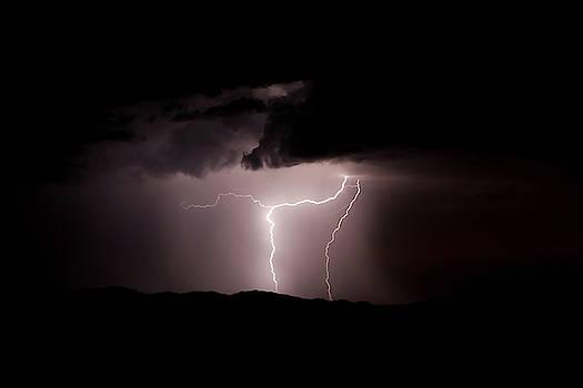 Desert Lightning by Cyndi Hardy
