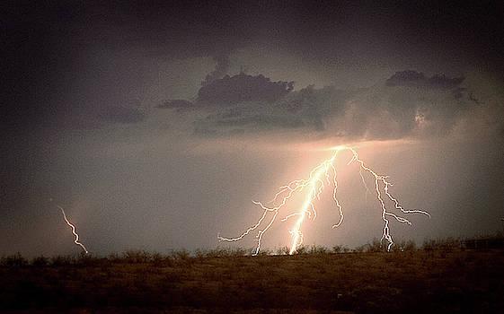 Desert Storm by Cyndi Hardy