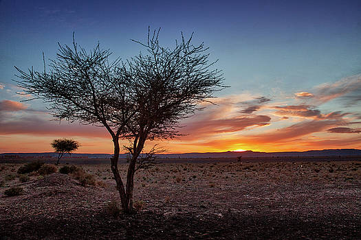 Desert Sunset by Peter OReilly