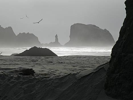 Desolation  by Micki Findlay