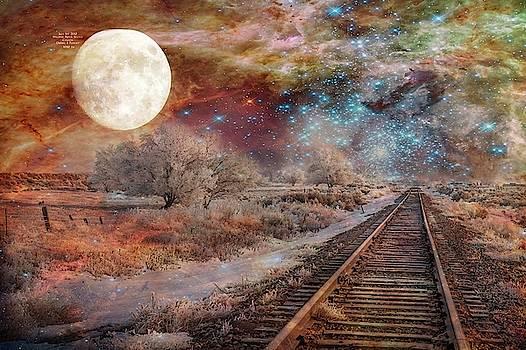 Destination Universe by Ramona Murdock