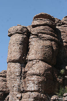 Devils Canyon Looking Up by Tom Janca