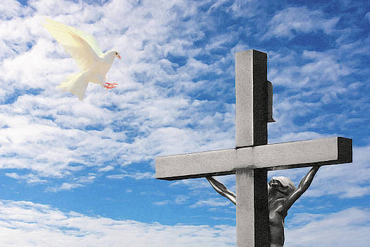 Digital drawing of a palmoa, christian cross and blue sky by Vicen Fotografia