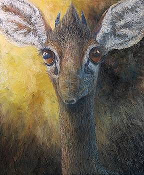 Dik-Dik by Elin Johnsen