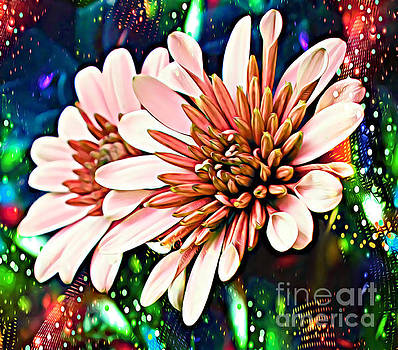 Disco Daisies #1 by Trudee Hunter