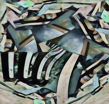Discombobulated Crap  by Philip A Swiderski Jr
