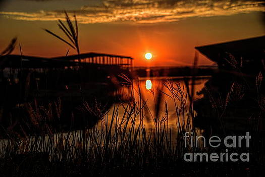 Distant Sunrise by Diana Mary Sharpton