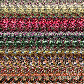DNA Autostereogram Qualias Meadow 1 by Russell Kightley