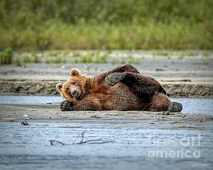 Do My Feet Look Big? - Bears by Jan Mulherin