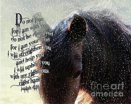Do Not Fear - Verse by Anita Faye