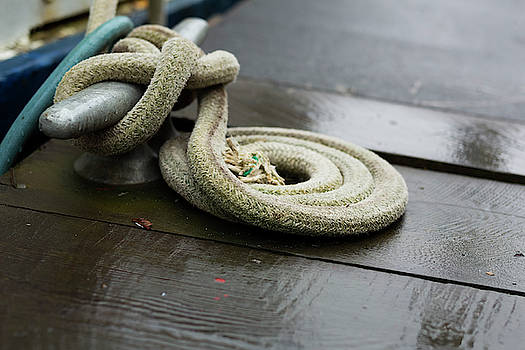 Dock Rope by Jackson Ball